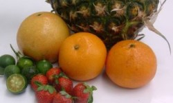 tropical-fruits_2285496